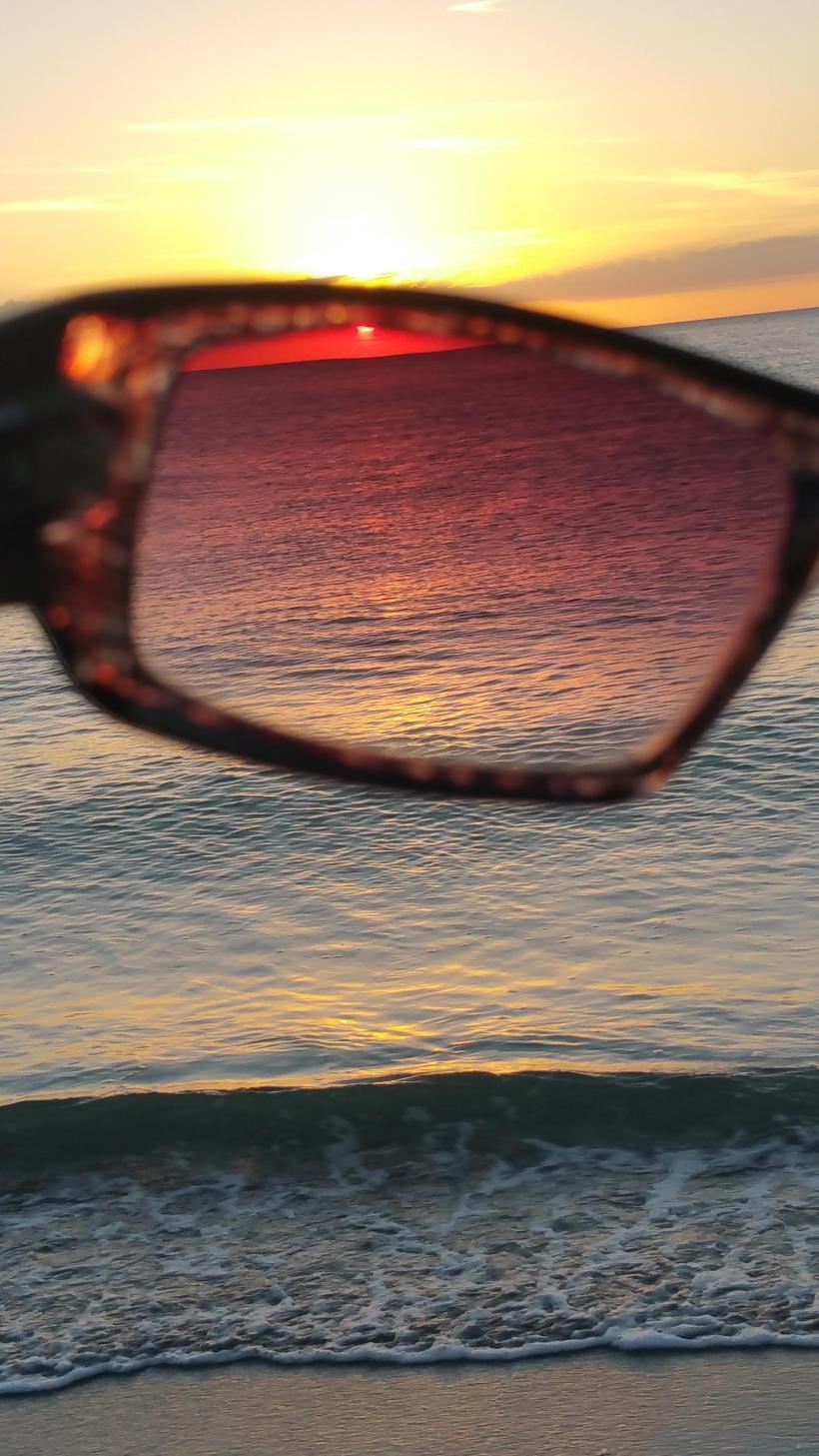 sunglass 1